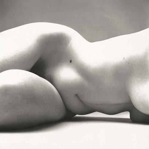 Irving-Penn-Grand-Palais-it-paris